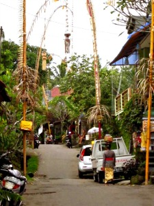 Back street, Bali, Indonesia. Photo credit: Belu.
