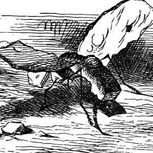'—then you don't like all insects?' the Gnat went on, as quietly as if nothing had happened. 'I like them when they can talk,' Alice said. 'None of them ever talk, where I come from.' Photo credit: John Tenniel.Slatifs at en.wikipedia [Public domain or Public domain], from Wikimedia Commons.