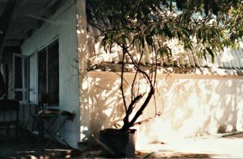 TSOW cottage 001 (2)