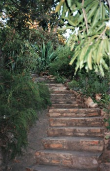 The steps leading down to Lake Kariba from the cottage; photo credit: Ruth Hartley.
