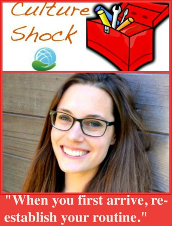 June 2015 Jessica Libowksi Culture Shock Toolbox