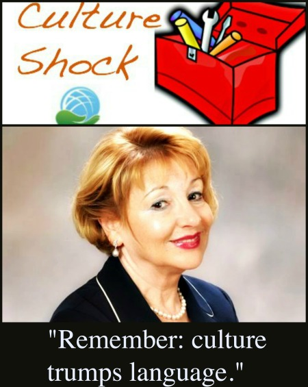 Fiona Citkin for Culture Shock Toolbox