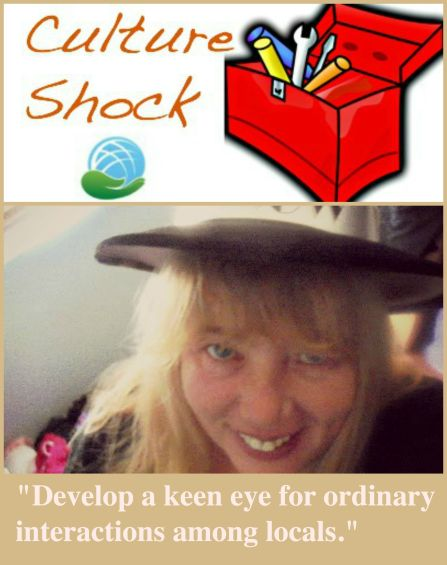 Culture Shock Toolbox Valerie Hamer