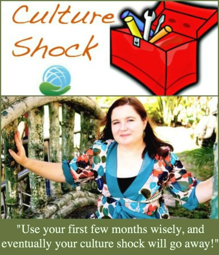 Culture Shock Toolbox Beth Green