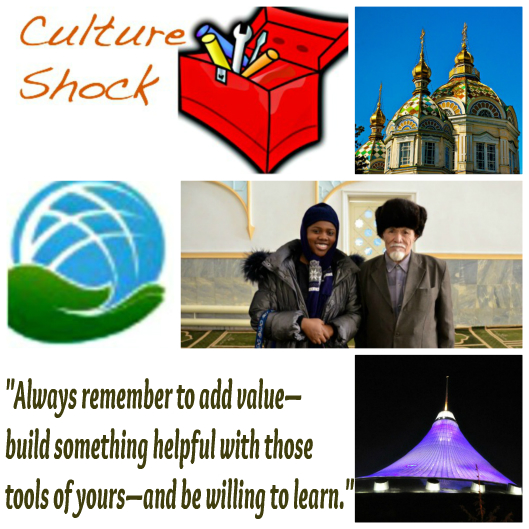 Culture Shock Toolbox January 2016