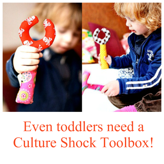 childrens-culture-shock-toolbox