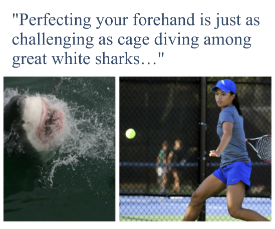 shark-forehand-quote